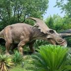 Zurück in die Zukunft und Jurassic Park
